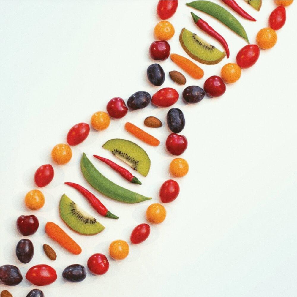 Inovações em Saúde: Nutrição Genética Gourmet